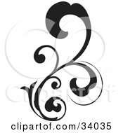 Black Bold Curling Vine Scroll