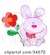 Clipart Illustration Of A Joyful Purple Bunny Rabbit Sitting With A Red Daisy Flower