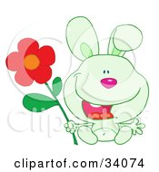 Clipart Illustration Of A Joyful Green Bunny Rabbit Sitting With A Red Daisy Flower