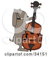 Musical Brown Dog Playing A Bass Fiddle