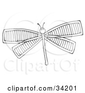 Clipart Illustration Of A Black And White Dragonfly With Lined Wings