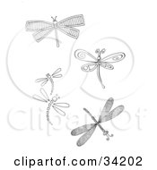 Clipart Illustration Of A Group Of Five Different Dragonflies