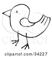 Clipart Illustration Of A Stick Bird In Profile by C Charley-Franzwa