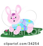 Pink Rabbit With An Easter Egg Body
