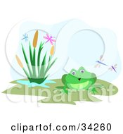 Clipart Illustration Of A Cute Green Bullfrog By Fox Tails And Dragonflies