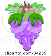 Clipart Illustration Of A Bunch Of Purple Grapes With Green Leaves And A Pink Flower by bpearth
