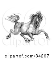 Clipart Illustration Of A Black And White Pen And Ink Drawing Of A Muscular Victorian Horse Trotting To The Right