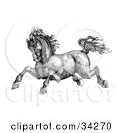 Clipart Illustration Of A Black And White Pen And Ink Drawing Of A Muscular Victorian Horse Running To The Left