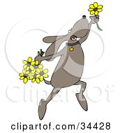 Happy Dog Leaping With Yellow Spring Flowers