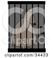 Jailed Dog Behind Bars In A Prison Cell