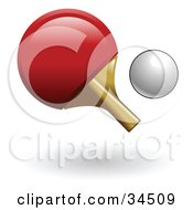 Clipart Illustration Of A Red Ping Pong Paddle And A White Ball