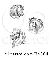 Clipart Illustration Of A Set Of Three Black And White Horse Heads by C Charley-Franzwa