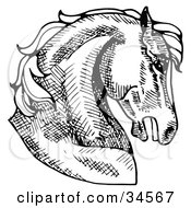 Clipart Illustration Of A Muscular Horses Head In Profile Facing Right by C Charley-Franzwa #COLLC34567-0078