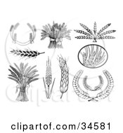 Clipart Illustration Of A Set Of Black And White Wheat Banners Bunches Heads And Laurels by C Charley-Franzwa