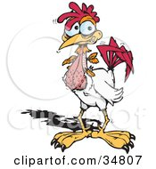 Clipart Illustration Of A Nervous Cock Shaking