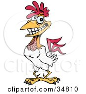 Clipart Illustration Of A Handsome White Rooster Grinning Light Sparkling Off Of His Gold Tooth by Dennis Holmes Designs