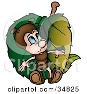 Clipart Illustration Of A Cute Little Brown Ant Character Hiding Behind A Green Leaf