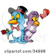 Clipart Illustration Of A Romantic Blue Male Bird In A Bow Tie And Hat Holding A Rose For His Beautiful Purple Female