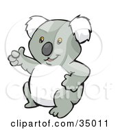 Friendly Koala Bear Waving