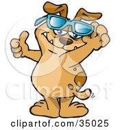 Clipart Illustration Of A Hip Brown Dog Lifting His Glasses And Giving The Thumbs Up by Dennis Holmes Designs