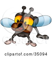 Clipart Illustration Of A Curious Fly With Big Orange Eyes And Brown Cheeks by dero