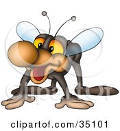 Clipart Illustration Of A Friendly Gray Fly With A Big Brown Nose by dero
