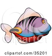 Clipart Illustration Of A Purple Fish With Tiger Stripes And Red Orange And Black Markings Swimming In Profile
