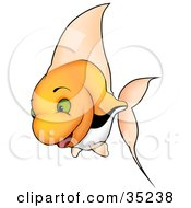 Clipart Illustration Of A Happy Orange Fish With Green Eyes Tall Fins And Black And White Stripes by dero