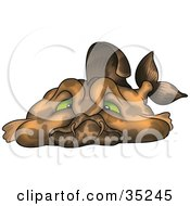 Clipart Illustration Of A Lazy Fat Brown Fish With Green Eyes Sulking by dero