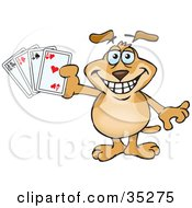 Grinning Brown Dog Holding Up Four Aces Playing Cards
