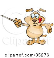 Smart Brown Dog Holding A Pointer Stick While Reviewing Rules Or Teaching A Lesson