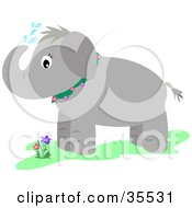 Clipart Illustration Of A Cute Elephant Showing Itself With Water From Its Trunk by bpearth