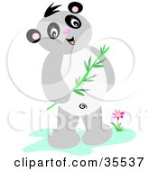 Friendly Panda Standing Near A Flower And Holding A Eucalyptus Branch