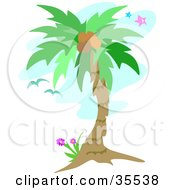 Clipart Illustration Of Birds Flying Near A Coconut Palm Tree Over A Blue Sky With Stars by bpearth