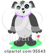 Friendly Panda Standing Up Near A Flower And Smiling