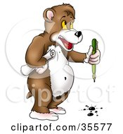 Clipart Illustration Of A Clumsy Bear Holding A Roll Of Paper And Spilling Ink From A Pen