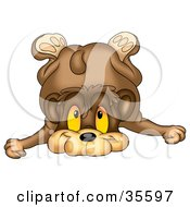 Clipart Illustration Of A Clumsy Bear Toppling Over Onto His Face by dero