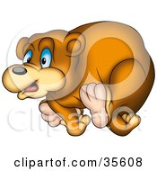 Clipart Illustration Of A Blue Eyed Bear Running by dero