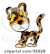 Clipart Illustration Of An Adorable Leopard With Big Eyes by dero