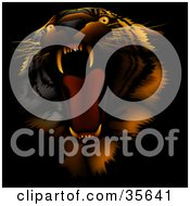 Clipart Illustration Of A Bad Tempered Tiger Roaring On A Dark Background With Red Lighting