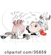 Clipart Illustration Of An Exhausted Dairy Cow Pumped With Hormones Laying On Its Back And Squirting Out Excess Milk