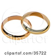 Two Gold Bridal Wedding Rings Resting Together