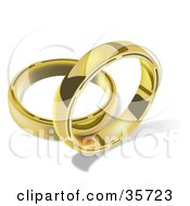 Two Golden Wedding Bands One Standing Upright