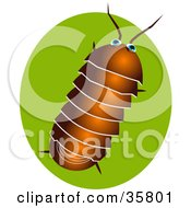 Clipart Illustration Of A Brown Pillbug Or Roly Poly Bug Over A Green Circle
