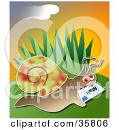 Clipart Illustration Of A Snail Delivering Mail A Letter In His Mouth by Prawny