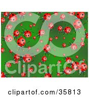 Clipart Illustration Of A Background Of Crowding Ladybugs On A Green Leaf