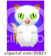 Poster, Art Print Of Cute Green Eyed Brown And White Kitten Sitting Up On Its Hind Legs And Begging