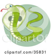 Clipart Illustration Of A Green Hissing Cobra Snake Showing Its Hood