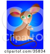 Cute Green Eyed Mouse Sitting On A Blue Background Looking Over Its Shoulder