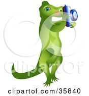 Female Alligator Standing On Her Hind Legs And Taking Pictures With A Camera